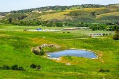 Ängar som täckas i grönt gräs och det lilla dammet på Rancho San Vicente, del av det Calero länet, parkerar, Santa Clara Co arkivbilder