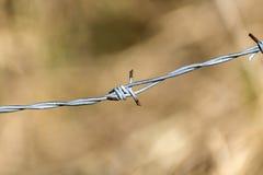 Ängbanaspolning mellan gröna ängar och leda till en skog arkivfoto