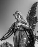 Ängel 7 B&W Royaltyfri Foto