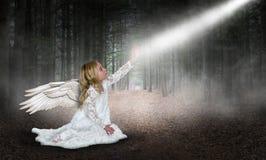 Ängel gud, förälskelse, hopp, fred, natur royaltyfri fotografi