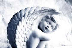 ängel little Royaltyfri Fotografi