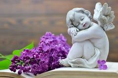 Ängel och blomma Fotografering för Bildbyråer