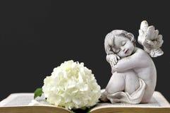 Ängel, vit blomma och gammal bok Royaltyfria Bilder