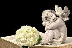 Ängel, vit blomma och gammal bok Royaltyfria Foton