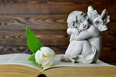 Ängel, vit tulpan och gammal bok Royaltyfri Fotografi