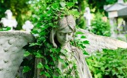 Ängelstaty med murgrönan Royaltyfria Foton
