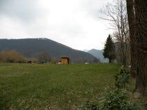 Ängen med prydligt och mejat gräs med blommor, i bakgrunden där är några hus och kullar Grön intakt natur Vägnollan royaltyfria foton