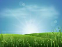Änggräs och himmel Royaltyfri Fotografi