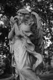änglar Arkivfoto