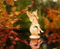 Änglar i hösten Arkivbilder