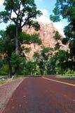 Änglar som landar berget som når en höjdpunkt till och med träd Mt Zion National Park St George UT Royaltyfri Fotografi