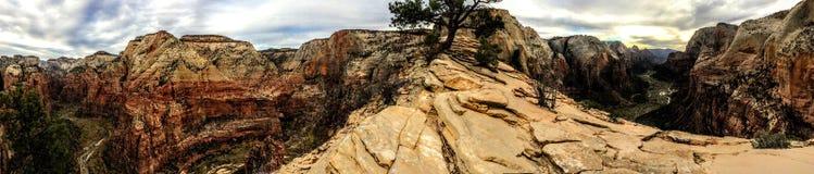 Änglar som landar slingan i Zion National Park Utah America Royaltyfria Bilder