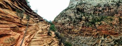 Änglar som landar slingan i Zion National Park Utah America Royaltyfri Foto