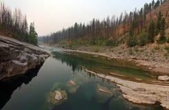 Ängliten vikklyfta på South Fork av den Flathead floden i det Bob Marshall Wilderness området i Montana USA Royaltyfri Fotografi