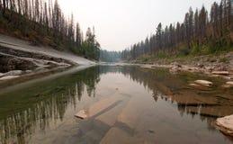 Ängliten vikklyfta på South Fork av den Flathead floden i det Bob Marshall Wilderness området i Montana USA Arkivfoton