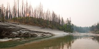 Ängliten vikklyfta på South Fork av den Flathead floden i det Bob Marshall Wilderness området i Montana USA Arkivbild