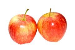 Äpfel. Stockfotografie