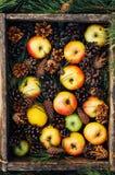 Äpfel auf einem dunklen hölzernen Hintergrund tonen Süße Äpfel auf hölzernem Stockbild