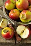 Äpfel auf einer hölzernen Tabelle Lizenzfreies Stockbild