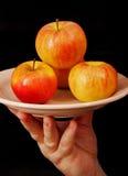 Äpfel auf einer Platte. Lizenzfreies Stockbild