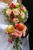 Äpfel auf Händen Stockfoto