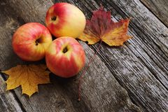 Äpfel auf hölzernem Hintergrund mit farbigen Ahornblättern Lizenzfreies Stockfoto