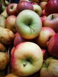 Äpfel auf Landwirtmarkt Lizenzfreie Stockbilder