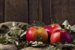 Äpfel auf Sackleinen Lizenzfreie Stockfotografie