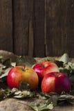 Äpfel auf Sackleinen Stockfotografie