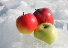 Äpfel auf Schnee 1 Lizenzfreies Stockbild