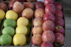 Äpfel bereit zum Verkauf Stockbilder