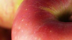 Äpfel Bio stock video footage