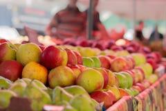 Äpfel der unterschiedlichen Vielzahl Lizenzfreies Stockbild