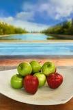 Äpfel in der weißen Platte Lizenzfreies Stockfoto