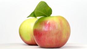 Äpfel, die auf Weiß sich drehen stock footage