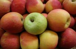 Äpfel, ein Grün Stockfoto
