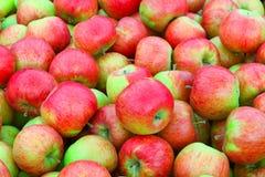 Äpfel in einem Kasten Lizenzfreies Stockfoto