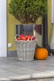 Äpfel in einem Korb mit Kürbis Lizenzfreie Stockfotos