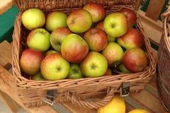 Äpfel in einem Weidenkorb Stockbild