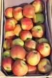 Äpfel in einer Kiste Lizenzfreie Stockfotos
