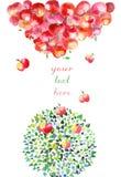 Äpfel fallen oben Stockbilder