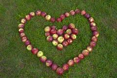 Äpfel in Form eines Herzens lizenzfreie stockbilder