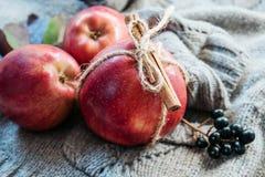 Äpfel gebunden mit einem Seil mit Zimt auf einem Stück grauem Leinen lizenzfreie stockbilder