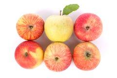 Äpfel getrennt Lizenzfreie Stockfotografie