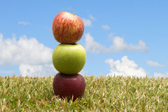 Äpfel im Gras Lizenzfreies Stockbild