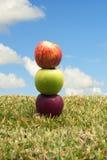 Äpfel im Gras Lizenzfreie Stockfotografie