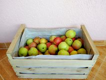 Äpfel im Kasten Stockfotos