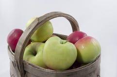 Äpfel im Korb. Lizenzfreie Stockbilder