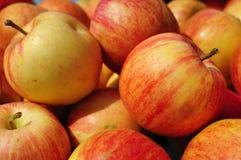 Äpfel im Markt Lizenzfreie Stockfotografie