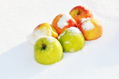 Äpfel im Schnee Stockfotografie